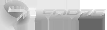 Forze Tri Logo
